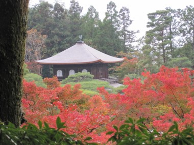Ginkakuji - View of a moss covered tree, the red maple leaves, and the temple from the top of the path.