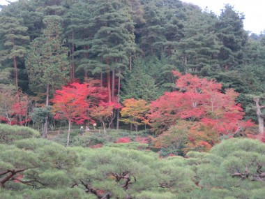 Ginkakuji - View of the top of the path with red leaves, orange leaves, green leaves, and evergreens.