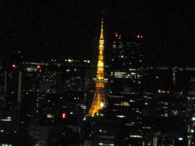 Tokyo Tower! As Satoru pointed out there's one thing you can't see from Tokyo Tower: Tokyo Tower. But you can see Tokyo's most famous landmark from Tokyo Municipal Building....