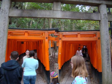 Fushimi Inari Taisha - Two roads diverged.... Each gate is donated by a company to support the shrine and hopefully their own business.