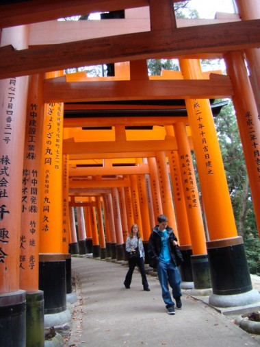 Teens from last year's tour walking under some of the many torii (gates) at the Fushimi Inari Taisha Shinto shrine.