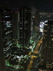 View of Tokyo at night from the Tokyo Municipal Government Building.