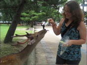 Nadia feeding cabbage to a deer in Nara, Japan. The tame deer roam freely and are considered sacred by the Japanese people.